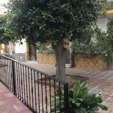El Ayuntamiento elimina las barreras arquitectónicas de la calle Haza del Mesón