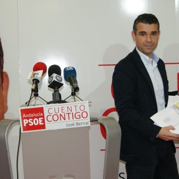 EL PSOE ESTUDIA SI LA APROBACIÓN EN PLENO DEL PUNTO SOBRE LAS LINDES ES NULO DE PLENO DERECHO POR LA PARTICIPACIÓN DE LA ALCALDESA