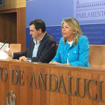 """Ángeles Muñoz pide a la Junta de Andalucía el """"mismo trato preferencial"""" que Marbella ha recibido del Gobierno de España"""