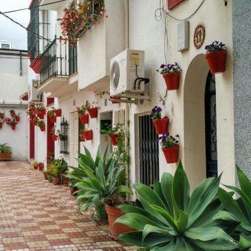 La Tenencia de Alcaldía de San Pedro Alcántara pone en marcha un plan para recuperar el tipismo andaluz de la zona centro