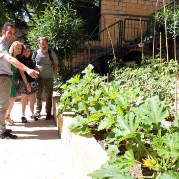 El Ayuntamiento conmemora el Día Mundial del Medio Ambiente informando a los centros educativos sobre la red municipal de huertos urbanos