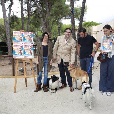 Medio Ambiente oferta un curso gratuito de adiestramiento de perros del 13 de noviembre al 8 de diciembre en el Fuerte Nagüeles