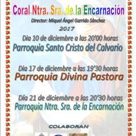 la Encarnación de Marbella, ofrecerá sus tradicionales conciertos de Navidad