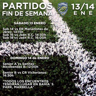 """Este fin de semana del 13 y 14 de enero, el """"Bahia's Park"""" de Marbella, acogera media docena de partidos de rugby"""