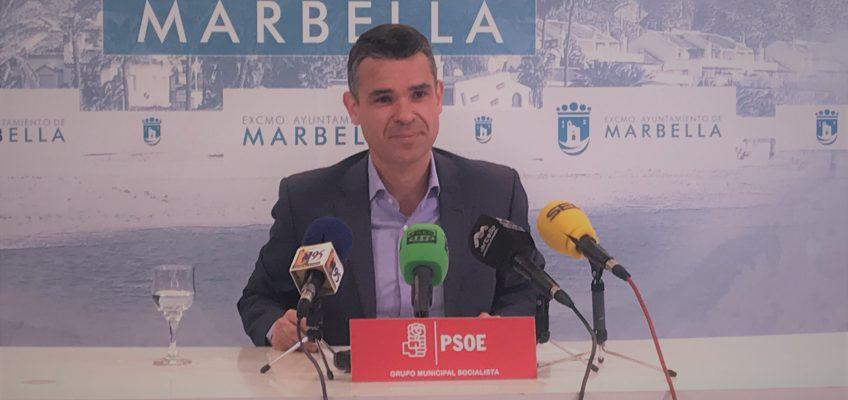 """el psoe estudia tomar medidas legales contra el proceso """"fraudulento"""" de elección de director del puerto depotivo"""