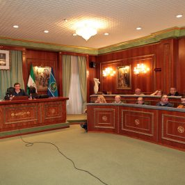 Reunión Consejo Sectorial de Participación Ciudadana De Marbella