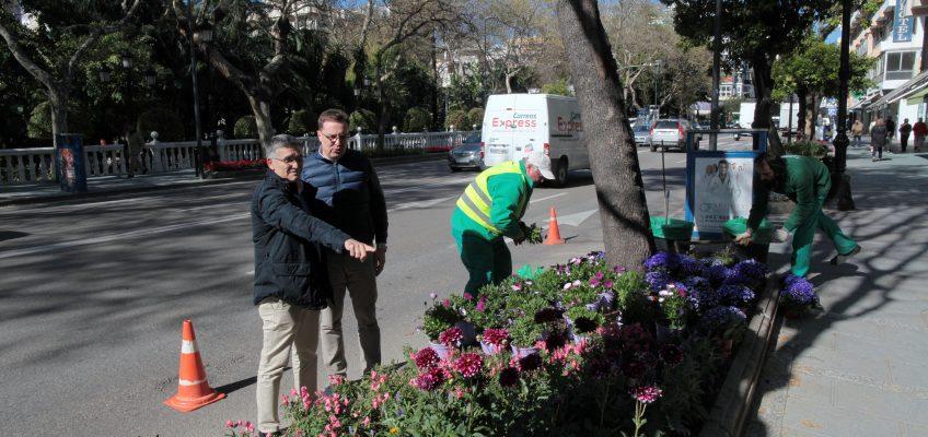 El Ayuntamiento mantiene su apuesta por el embellecimiento de las zonas verdes con la plantación de 20.000 flores en 30 puntos de la ciudad