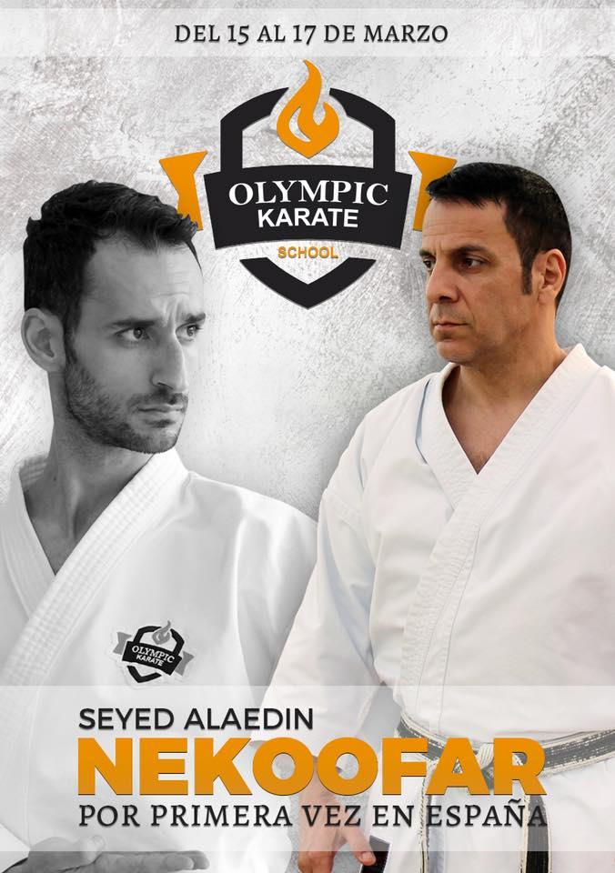 Olympic Karate Marbella trae el  Mejor Karate Internacional  a la ciudad