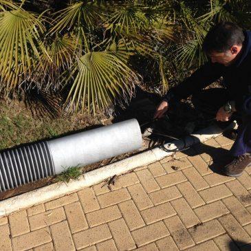 La Tenencia de San Pedro comienza los arreglos en el Parque de los Tres Jardines con desbroce y reparaciones eléctricas
