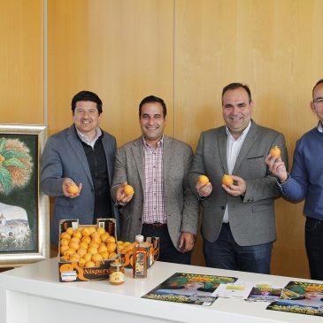 La marca promocional Sabor a Málaga, premiada en la 34º edición del Día del Níspero de Sayalonga La fiesta, declarada de Singularidad Turística de la Provincia y que se celebra el próximo domingo 6 de mayo, espera recibir más de 8.000 visitantes