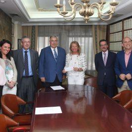 Marbella recupera 12 millones de euros de los bienes incautados en causas judiciales por corrupción que se destinarán a servicios y equipamientos públicos