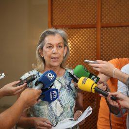 """El Ayuntamiento pedirá explicaciones a la Junta de Andalucía sobre un supuesto pacto con el PSOE de Marbella """"para mantener artificialmente la polémica de las lindes"""""""
