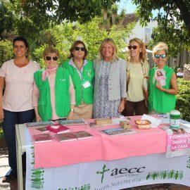El Ayuntamiento de Marbella se une a la campaña #SúmateAlRosa con motivo del Día Internacional contra el Cáncer de Mama