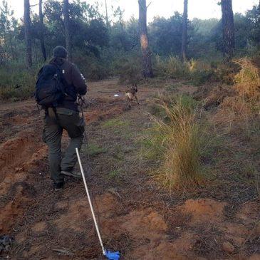 La unidad canina de Protección Civil localiza a un hombre de 80 años desaparecido
