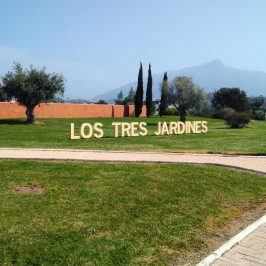 osp destaca del Área de Medio Ambiente la puesta en valor del Parque de los Tres Jardines tras su concesión