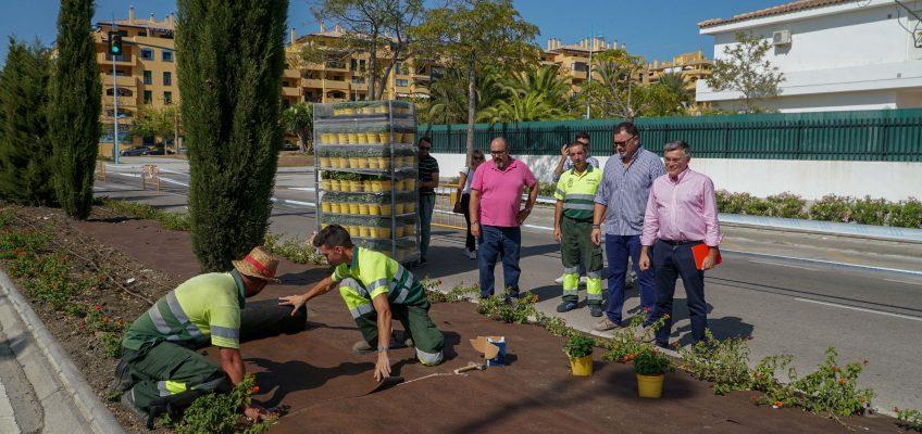 La Tenencia de Alcaldía de San Pedro Alcántara inicia un plan integral de ajardinamiento en la Variante Sur